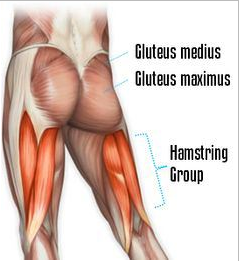 Use your glutes when running uphill. You need your quads for the way back down!
