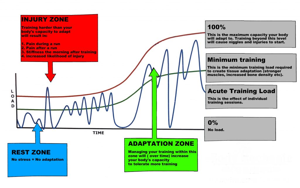 Adaptation to running training